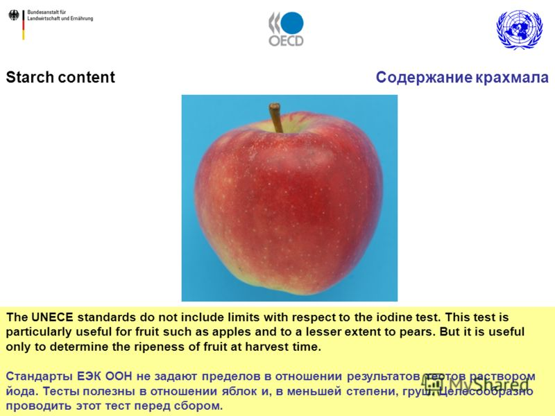 38 The UNECE standards do not include limits with respect to the iodine test. This test is particularly useful for fruit such as apples and to a lesser extent to pears. But it is useful only to determine the ripeness of fruit at harvest time. Стандар