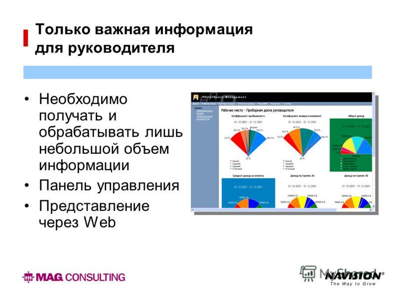 Только важная информация для руководителя Необходимо получать и обрабатывать лишь небольшой объем информации Панель управления Представление через Web