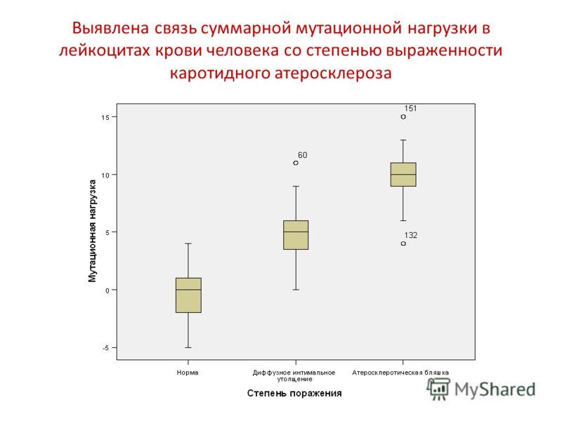 Выявлена связь суммарной мутационной нагрузки в лейкоцитах крови человека со степенью выраженности каротидного атеросклероза