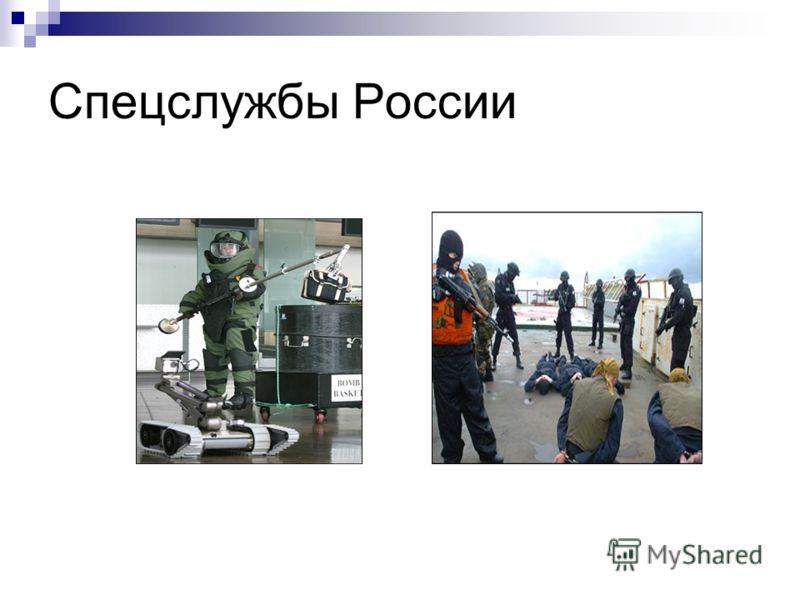 Спецслужбы России