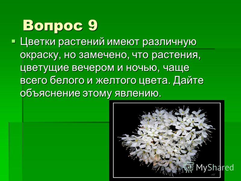 Вопрос 9 Цветки растений имеют различную окраску, но замечено, что растения, цветущие вечером и ночью, чаще всего белого и желтого цвета. Дайте объяснение этому явлению. Цветки растений имеют различную окраску, но замечено, что растения, цветущие веч
