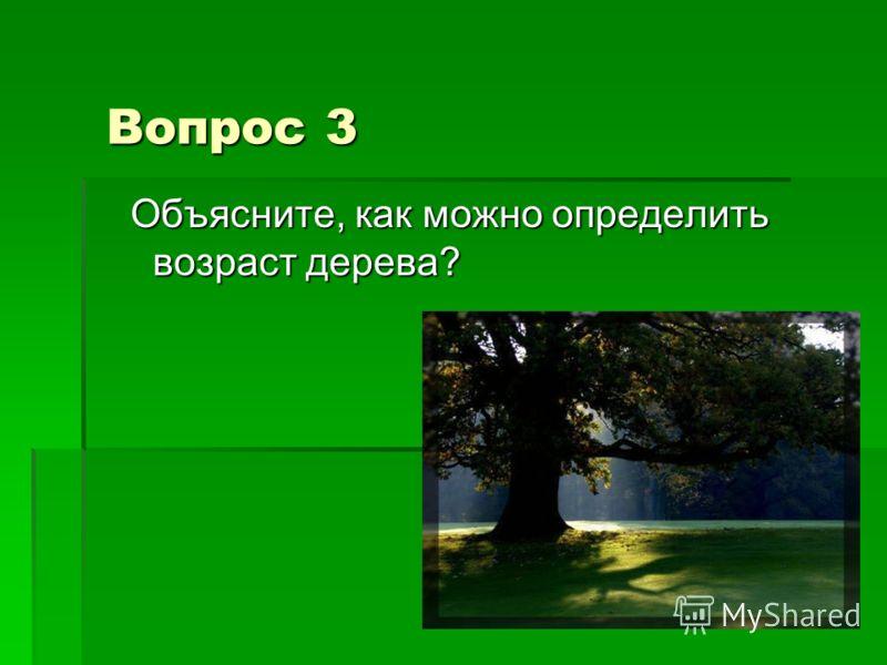 Вопрос 3 Объясните, как можно определить возраст дерева? Объясните, как можно определить возраст дерева?