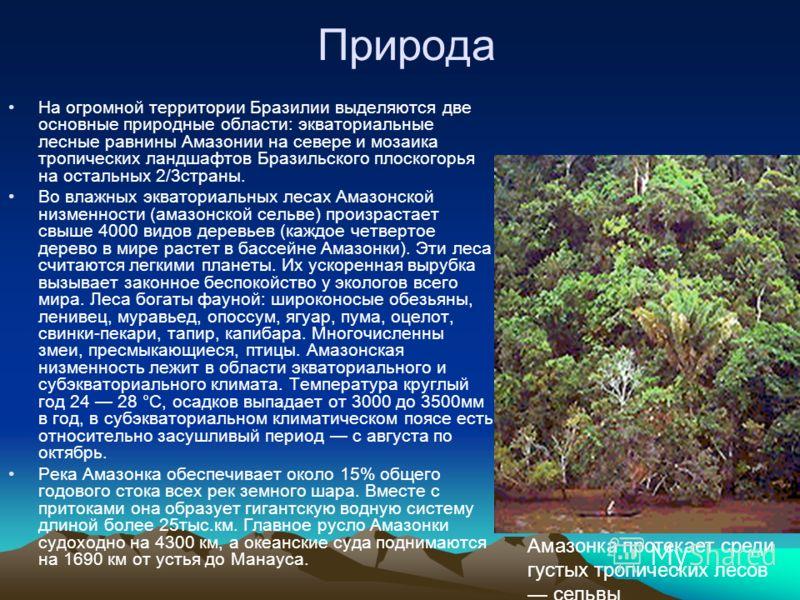Природа На огромной территории Бразилии выделяются две основные природные области: экваториальные лесные равнины Амазонии на севере и мозаика тропических ландшафтов Бразильского плоскогорья на остальных 2/3страны. Во влажных экваториальных лесах Амаз