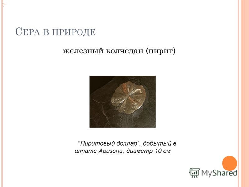 С ЕРА В ПРИРОДЕ железный колчедан (пирит)  Пиритовый доллар, добытый в штате Аризона, диаметр 10 см