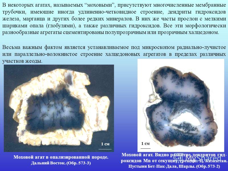 В некоторых агатах, называемых моховыми, присутствуют многочисленные мембранные трубочки, имеющие иногда удлиненно-четковидное строение, дендриты гидроксидов железа, марганца и других более редких минералов. В них же часты прослои с мелкими шариками