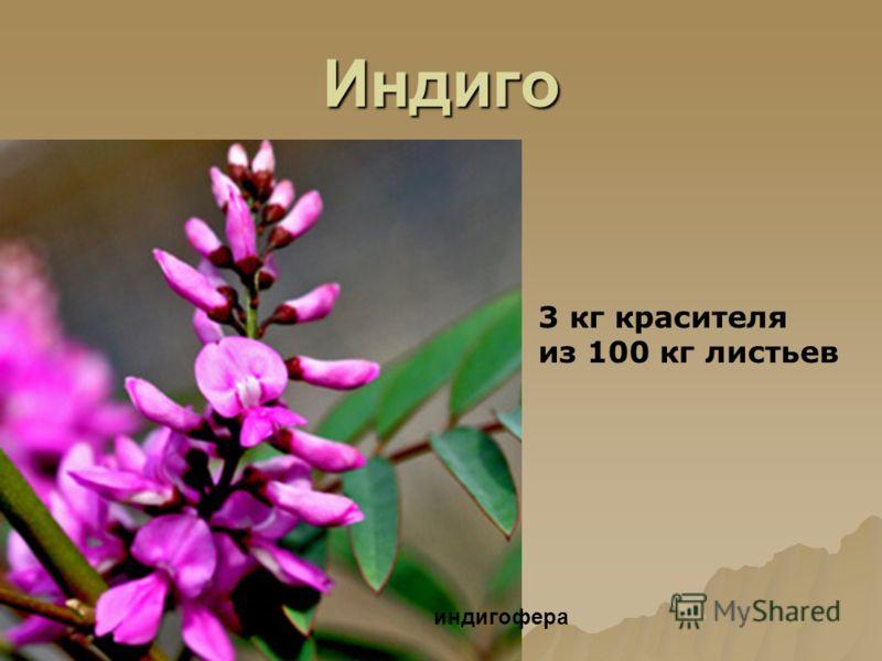 Индиго 3 кг красителя из 100 кг листьев индигофера