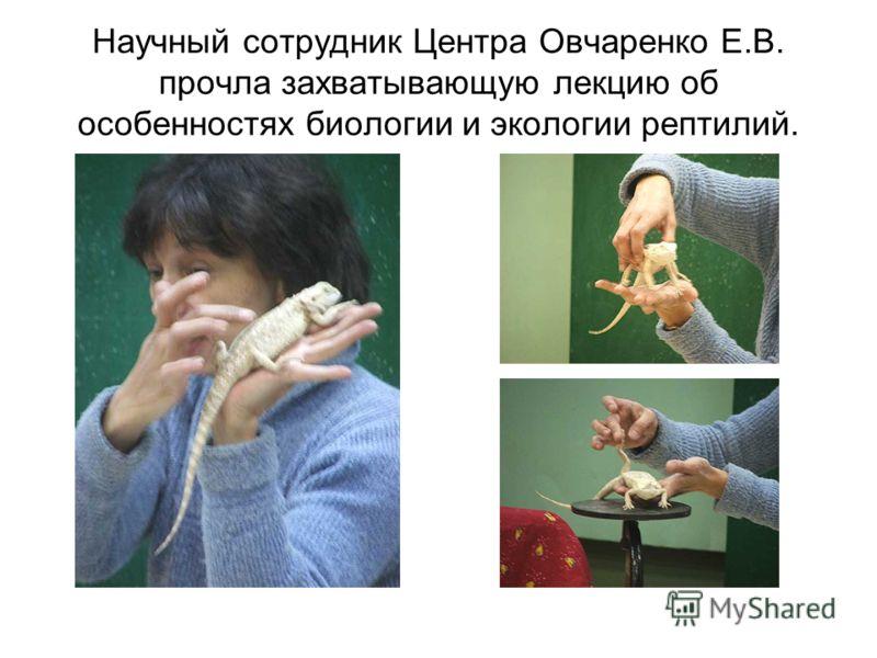Научный сотрудник Центра Овчаренко Е.В. прочла захватывающую лекцию об особенностях биологии и экологии рептилий.