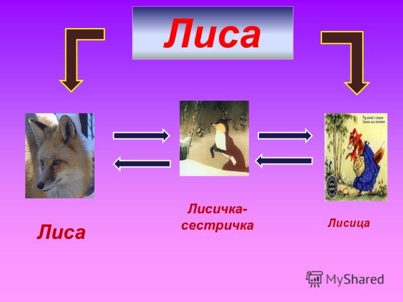 Лиса Лисичка- сестричка Лисица
