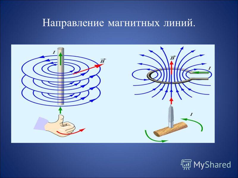 Какие утверждения являются верными? А.В природе существуют электрические заряды. Б.В природе существуют магнитные заряды. В.В природе не существует электрических зарядов. Г.В природе не существует магнитных зарядов. а) А и Б, б) А и В, в) А и Г, г) Б