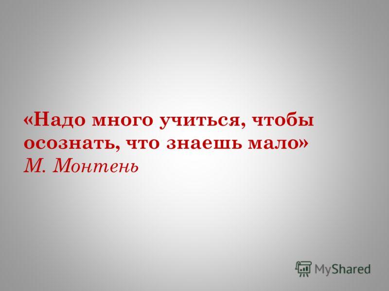 «Надо много учиться, чтобы осознать, что знаешь мало» М. Монтень