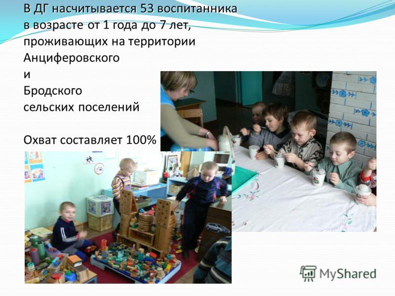 В ДГ насчитывается 53 воспитанника в возрасте от 1 года до 7 лет, проживающих на территории Анциферовского и Бродского сельских поселений Охват составляет 100%
