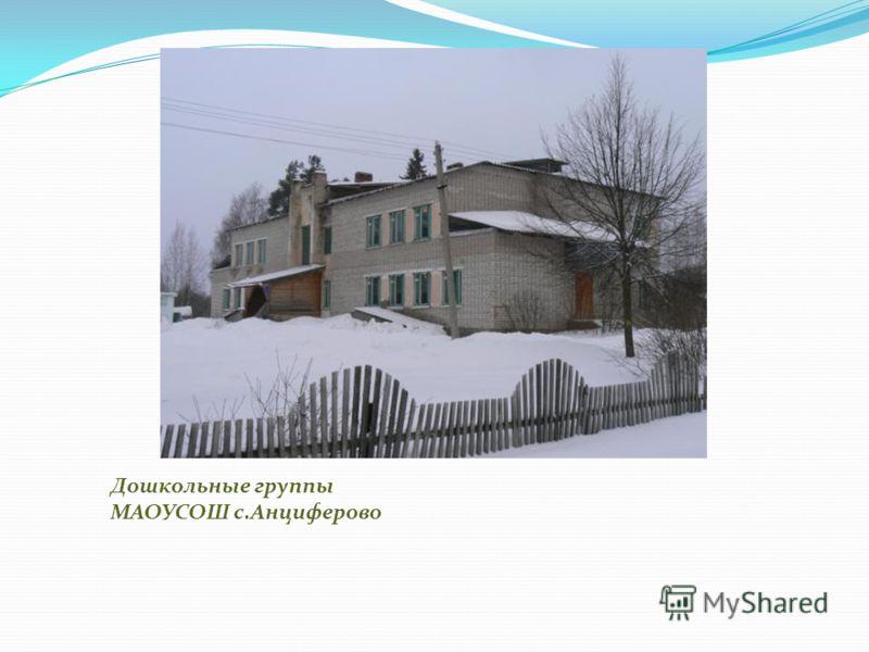 Дошкольные группы МАОУСОШ с.Анциферово