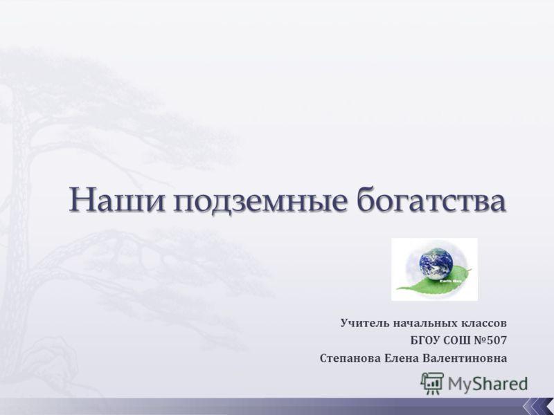 Учитель начальных классов БГОУ СОШ 507 Степанова Елена Валентиновна