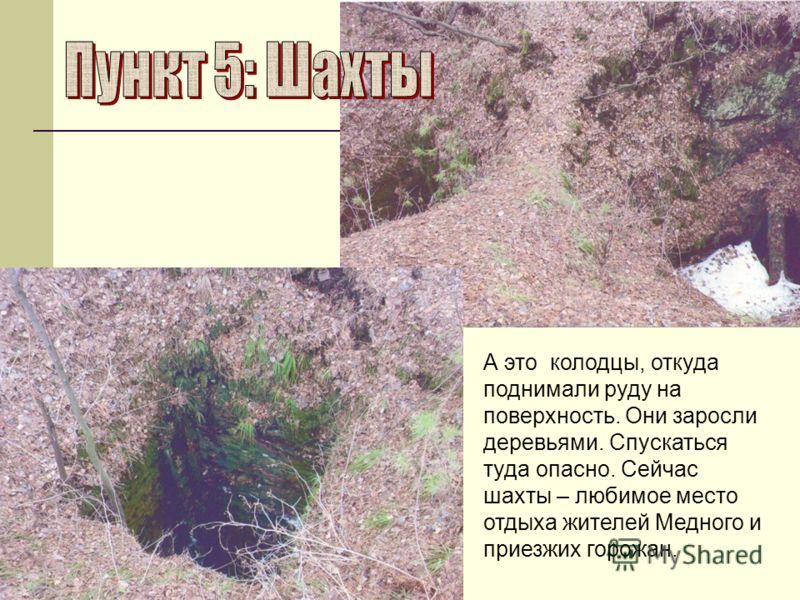 А это колодцы, откуда поднимали руду на поверхность. Они заросли деревьями. Спускаться туда опасно. Сейчас шахты – любимое место отдыха жителей Медного и приезжих горожан.