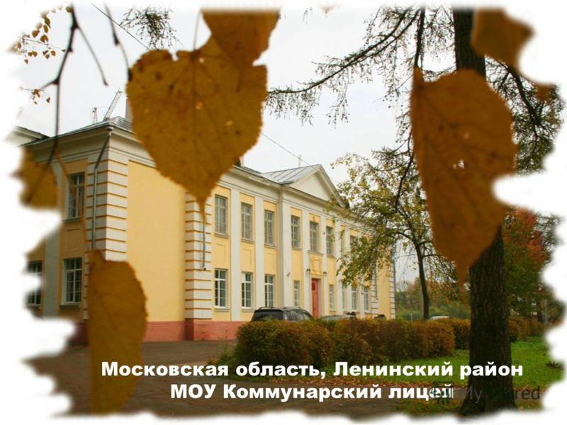 Московская область, Ленинский район МОУ Коммунарский лицей