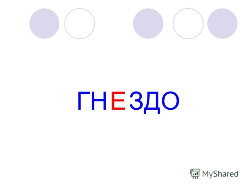 ГН ЗДОЕ