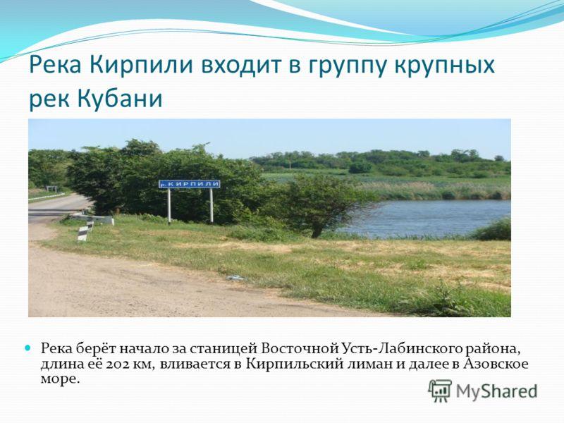 Река Кирпили входит в группу крупных рек Кубани Река берёт начало за станицей Восточной Усть-Лабинского района, длина её 202 км, вливается в Кирпильский лиман и далее в Азовское море.