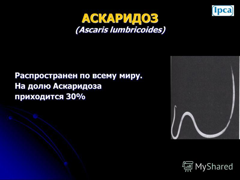 АСКАРИДОЗ (Ascaris lumbricoides) Распространен по всему миру. На долю Аскаридоза приходится 30%
