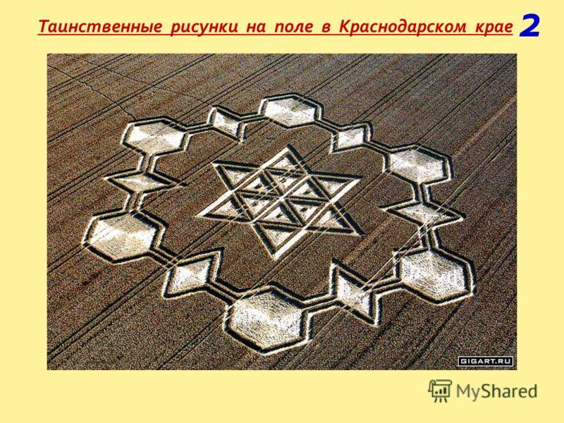 Таинственные рисунки на поле в Краснодарском крае 2