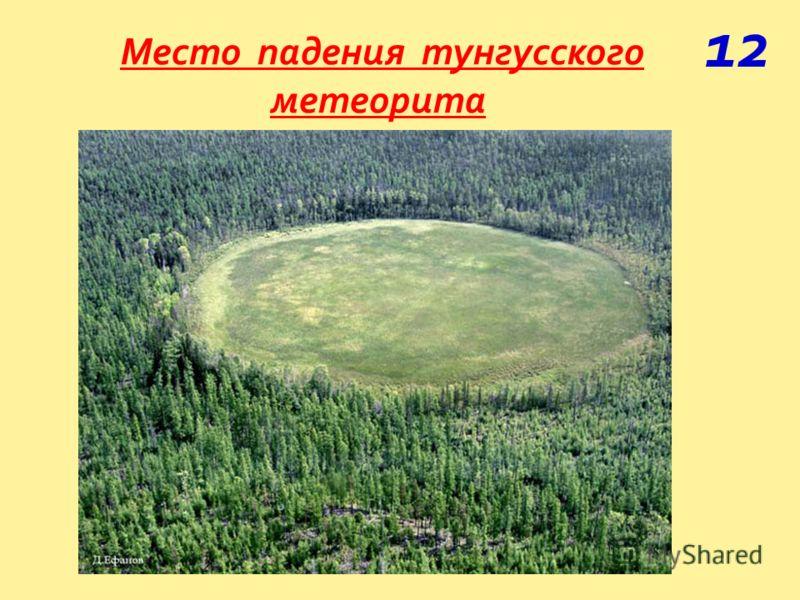 Место падения тунгусского метеорита 12