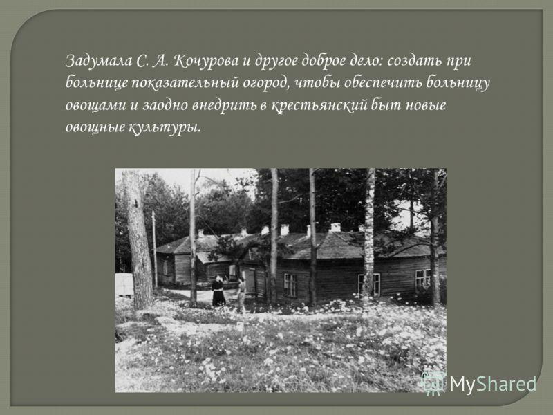 Задумала С. А. Кочурова и другое доброе дело: создать при больнице показательный огород, чтобы обеспечить больницу овощами и заодно внедрить в крестьянский быт новые овощные культуры.