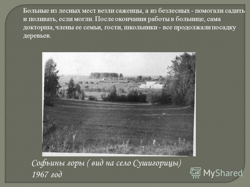 Софьины горы ( вид на село Сушигорицы) 1967 год Больные из лесных мест везли саженцы, а из безлесных - помогали садить и поливать, если могли. После окончания работы в больнице, сама докторша, члены ее семьи, гости, школьники - все продолжали посадку