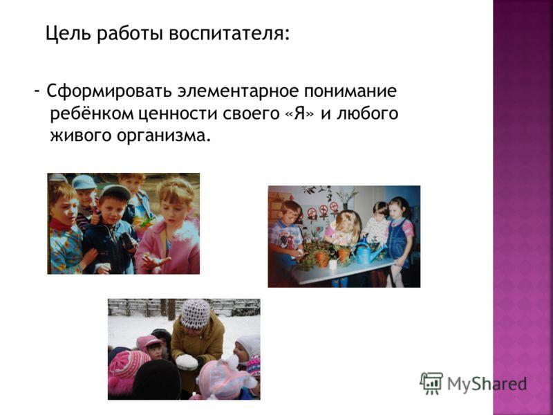 Цель работы воспитателя: - Сформировать элементарное понимание ребёнком ценности своего «Я» и любого живого организма.