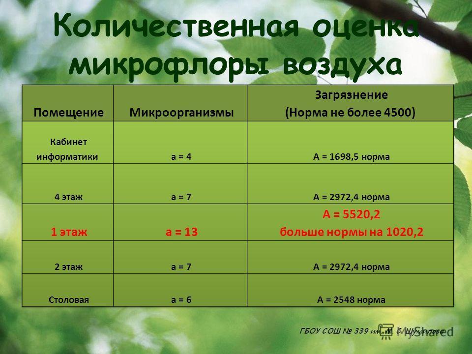 Количественная оценка микрофлоры воздуха