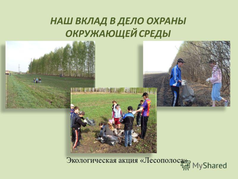 НАШ ВКЛАД В ДЕЛО ОХРАНЫ ОКРУЖАЮЩЕЙ СРЕДЫ Экологическая акция «Лесополоса»