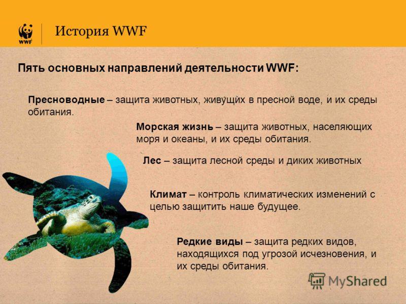 Пять основных направлений деятельности WWF: История WWF Климат – контроль климатических изменений с целью защитить наше будущее. Редкие виды – защита редких видов, находящихся под угрозой исчезновения, и их среды обитания. Пресноводные – защита живот