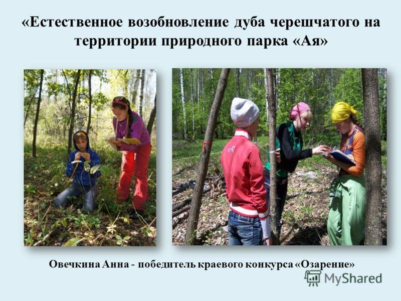 Овечкина Анна - победитель краевого конкурса «Озарение» «Естественное возобновление дуба черешчатого на территории природного парка «Ая»