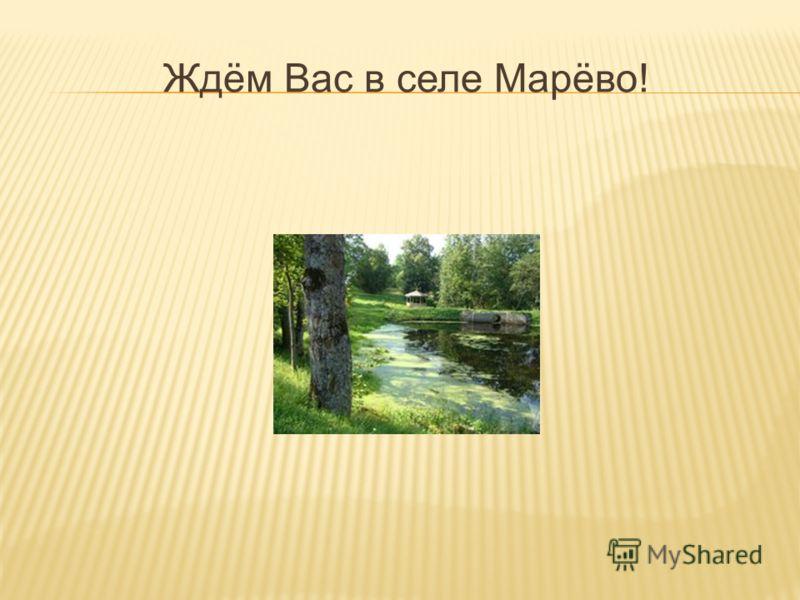 Ждём Вас в селе Марёво!