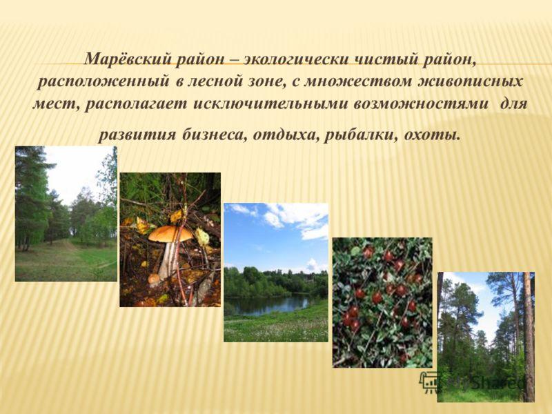 Марёвский район – экологически чистый район, расположенный в лесной зоне, с множеством живописных мест, располагает исключительными возможностями для развития бизнеса, отдыха, рыбалки, охоты.