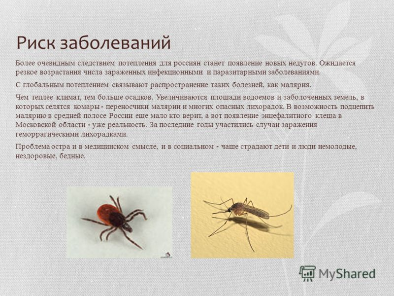 Риск заболеваний Более очевидным следствием потепления для россиян станет появление новых недугов. Ожидается резкое возрастания числа зараженных инфекционными и паразитарными заболеваниями. С глобальным потеплением связывают распространение таких бол