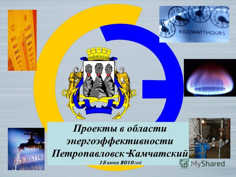 Проекты в области энергоэффективности Петропавловск - Камчатский 15 июня 2010 год