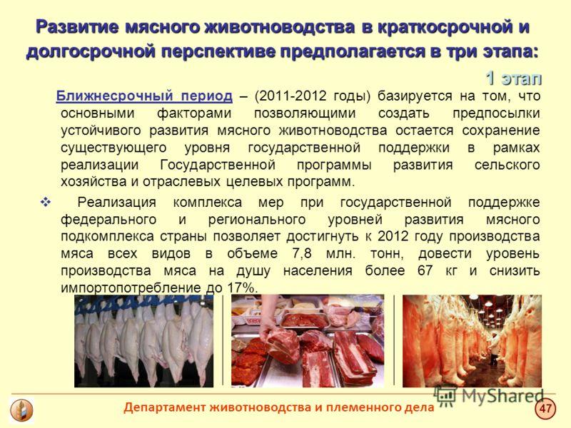 Развитие мясного животноводства в краткосрочной и долгосрочной перспективе предполагается в три этапа: Ближнесрочный период – (2011-2012 годы) базируется на том, что основными факторами позволяющими создать предпосылки устойчивого развития мясного жи