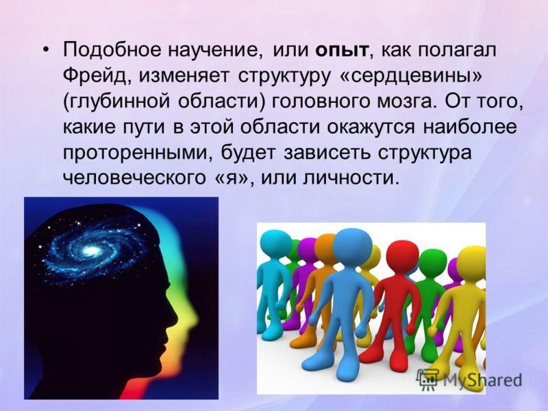 Подобное научение, или опыт, как полагал Фрейд, изменяет структуру «сердцевины» (глубинной области) головного мозга. От того, какие пути в этой области окажутся наиболее проторенными, будет зависеть структура человеческого «я», или личности.