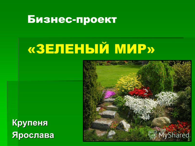 Бизнес-проект «ЗЕЛЕНЫЙ МИР» КрупеняЯрослава