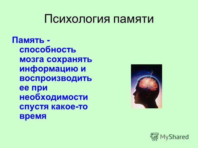 Психология памяти Память - способность мозга сохранять информацию и воспроизводить ее при необходимости спустя какое-то время