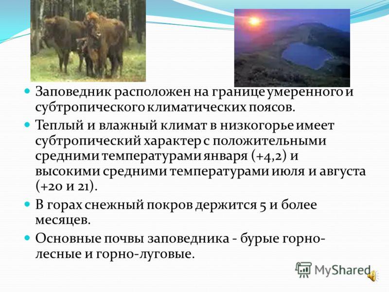 Территория заповедника представляет собой типичный горный ландшафт и характеризуется высотными отметками от 260 до 3360 м над уровнем моря. Основа его рельефа - Главный Кавказский хребет, протянувшийся с северо-запада на юго-восток. Самые западные ве