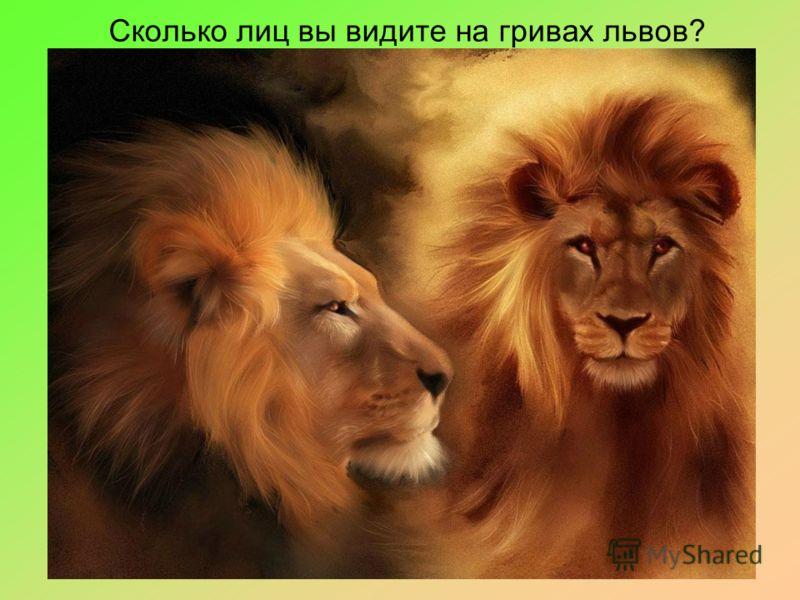 Сколько лиц вы видите на гривах львов?