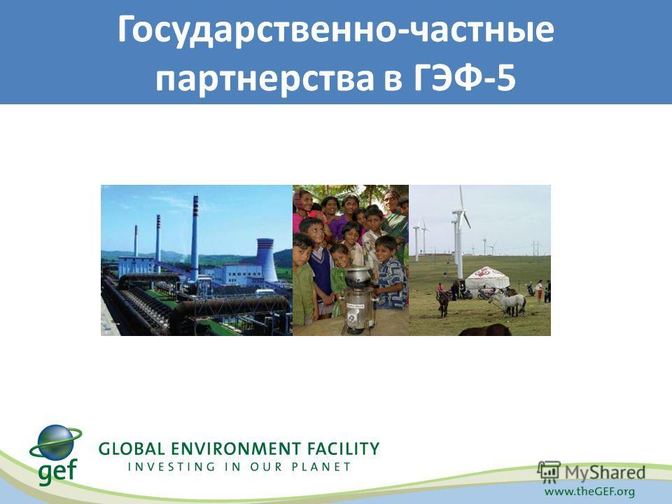 Государственно-частные партнерства в ГЭФ-5