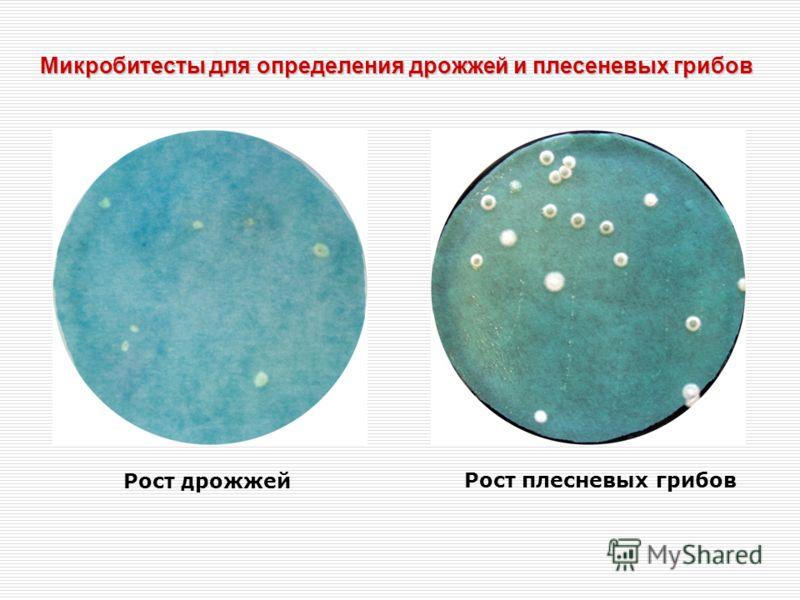 Микробитесты для определения дрожжей и плесеневых грибов Рост дрожжей Рост плесневых грибов