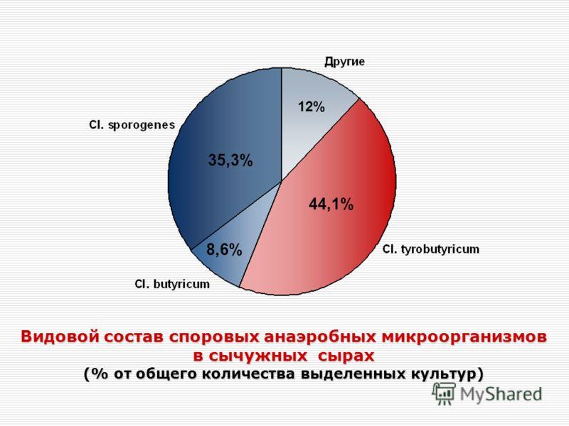 12% 44,1% 8,6% 35,3% Видовой состав споровых анаэробных микроорганизмов в сычужных сырах (% от общего количества выделенных культур)