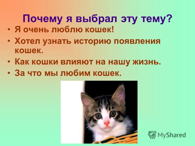 Почему я выбрал эту тему? Я очень люблю кошек! Хотел узнать историю появления кошек. Как кошки влияют на нашу жизнь. За что мы любим кошек.