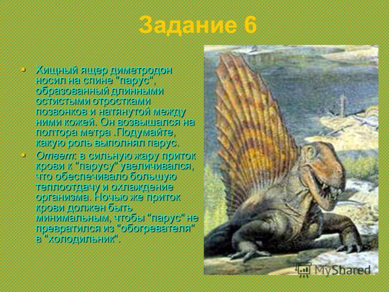 Задание 6 Хищный ящер диметродон носил на спине