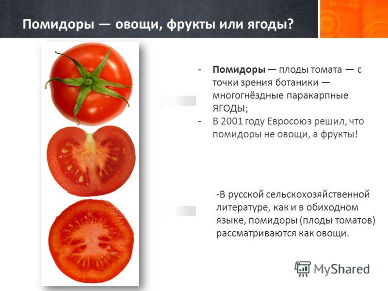 Реферат на тему томат 4573