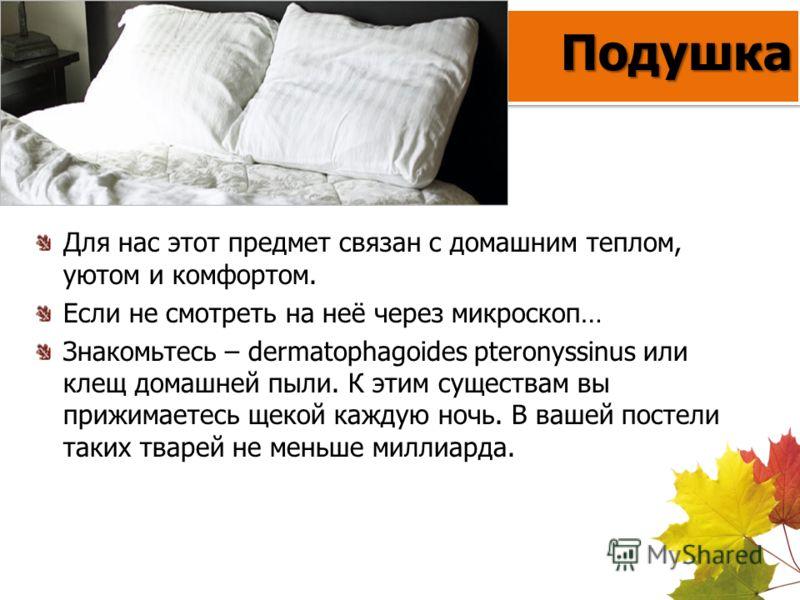 Подушка Для нас этот предмет связан с домашним теплом, уютом и комфортом. Если не смотреть на неё через микроскоп… Знакомьтесь – dermatophagoides pteronyssinus или клещ домашней пыли. К этим существам вы прижимаетесь щекой каждую ночь. В вашей постел