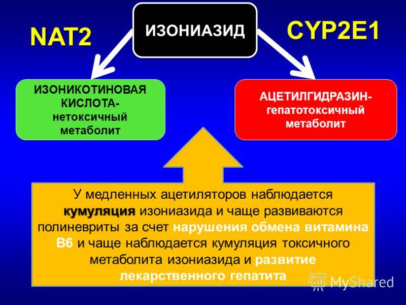 ИЗОНИАЗИД ИЗОНИКОТИНОВАЯ КИСЛОТА- нетоксичный метаболит ИЗОНИКОТИНОВАЯ КИСЛОТА- нетоксичный метаболит АЦЕТИЛГИДРАЗИН- гепатотоксичный метаболит АЦЕТИЛГИДРАЗИН- гепатотоксичный метаболит CYP2E1 NAT2 кумуляция У медленных ацетиляторов наблюдается кумул