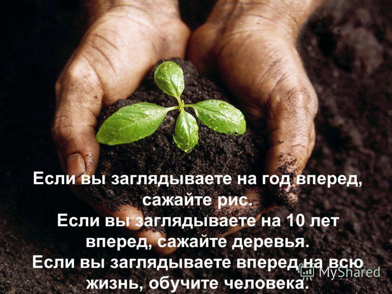 Если вы заглядываете на год вперед, сажайте рис. Если вы заглядываете на 10 лет вперед, сажайте деревья. Если вы заглядываете вперед на всю жизнь, обучите человека.
